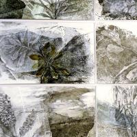 <p>The Rim (detail)<br />2014<br />pencil on collaged monoprints<br />91 x 55cm<br />a series of studies of flora in the caldera rim of northern NSW<br />awarded 2nd prize Border Art Prize, Tweed Regional Gallery  2014</p>
