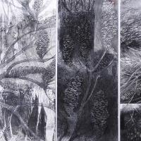 <p>Fire in the Banksia Scrub - Lennox Head 2014 (detail)<br />73cm x 76cm framed<br />charcoal, pastel and acrylic</p>