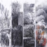 <p>Fire in the Banksia Scrub - Lennox Head 2014<br />73cm x 76cm framed<br />charcoal, pastel and acrylic</p>