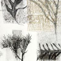 <p>walk look see 1 (detail) 2015<br />43 x 29 cm<br />pencil on collaged monotype prints</p>