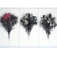 <p>gymea lily seed heads - triptych<br />2015<br />115cm x 75cm<br />charcoal and pastel on paper</p>
